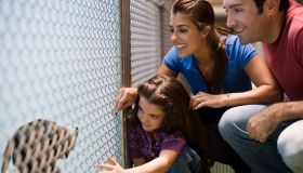 Family at an animal shelter