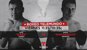 Boxeo promo