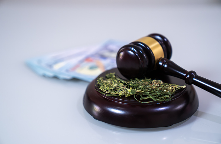 The cannabis leaf and judge gavel,Marijuana concept,Marijuana,Law